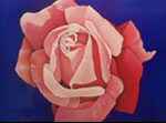 Romantic Rose: Large Closeup Rose Paintings on Canvas
